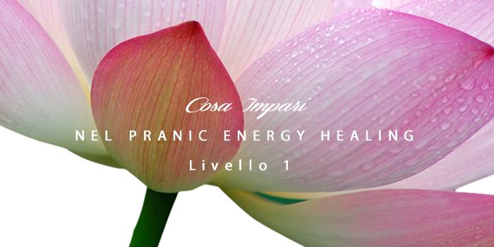 Cosa si impara nel Pranic Energy Healing livello 1
