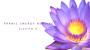 Corso Pranic Energy Healing Livello 3